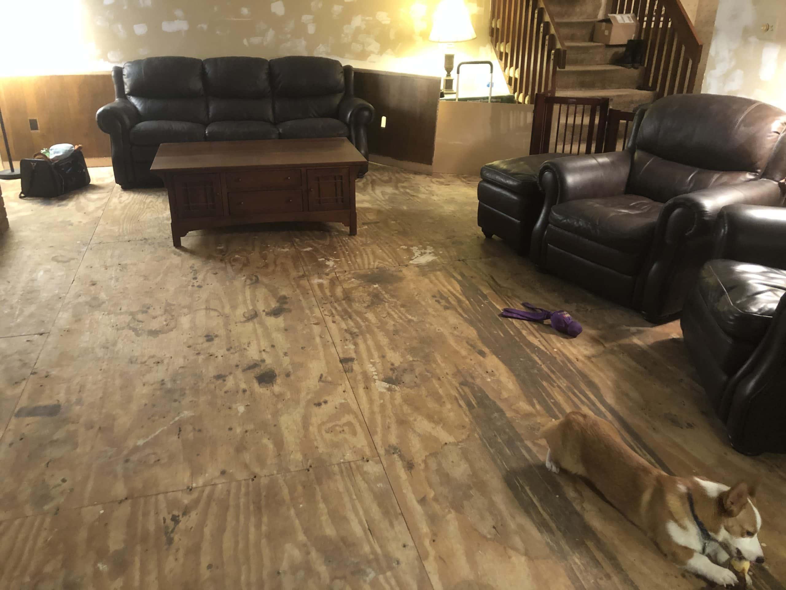 Remodeling Floor